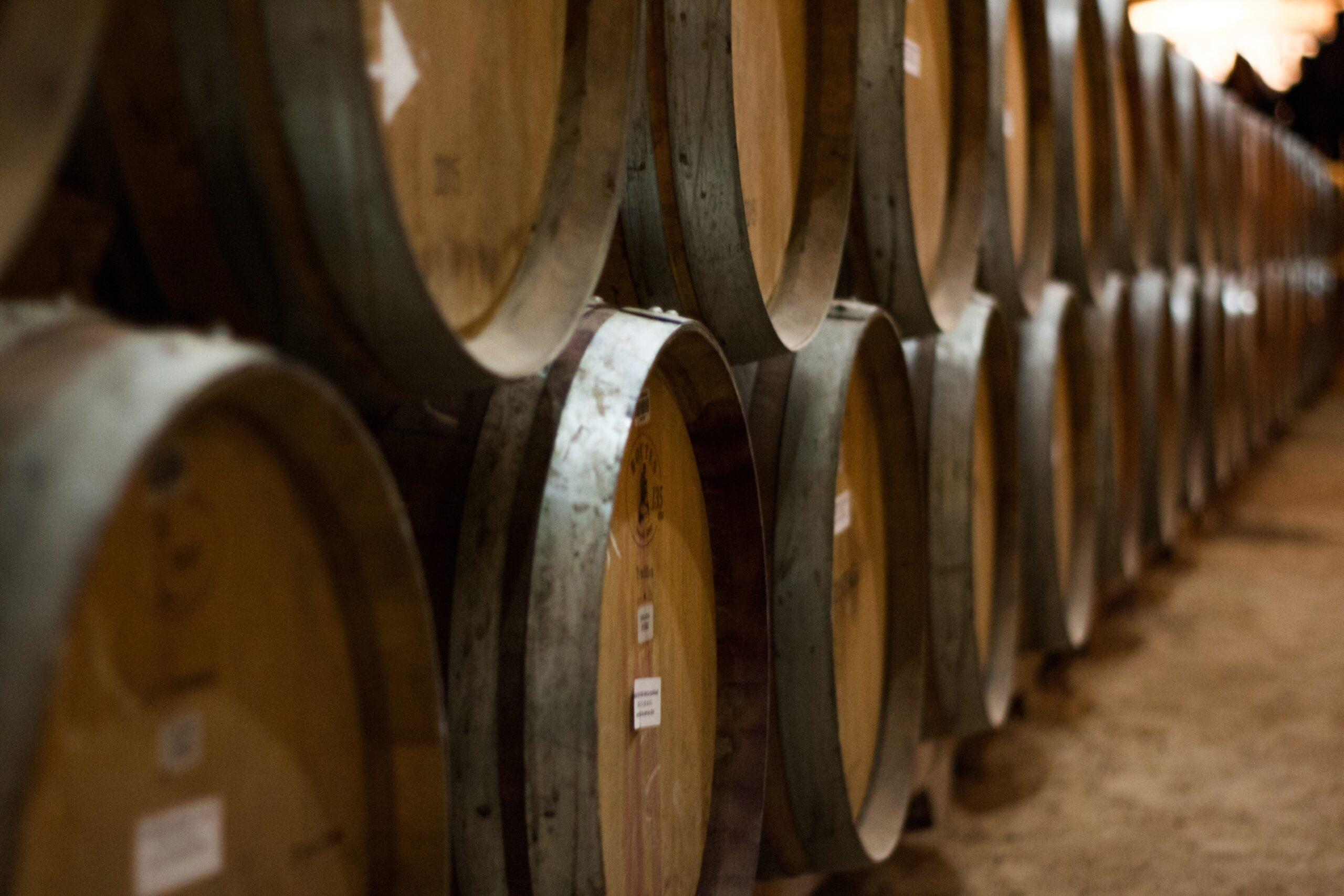 Cantina con diverse Barrique vino