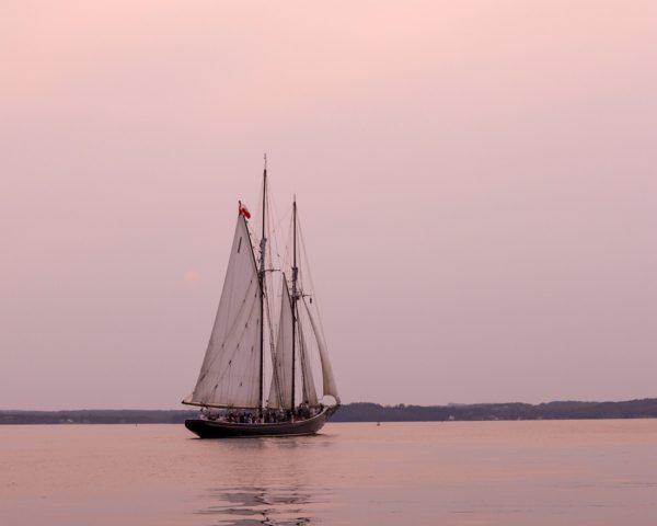 champagne sostenibilità barca a vela