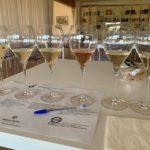 Barone Pizzini degustazione 6 vini