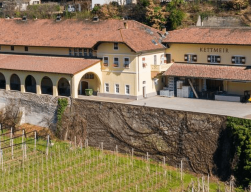 Kettmeir Athesis Pinot Bianco Doc Alto Adige