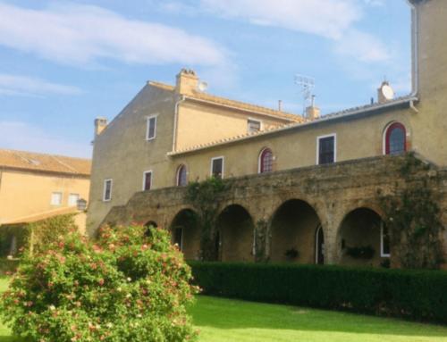 Vino Toscano Sassicaia Tenuta San Guido