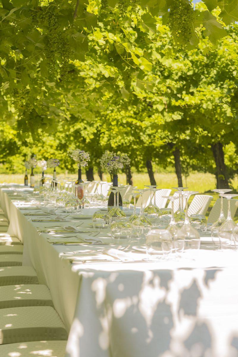 Pranzo da Enotria Tellus cantine veneto viticultura enoturismo