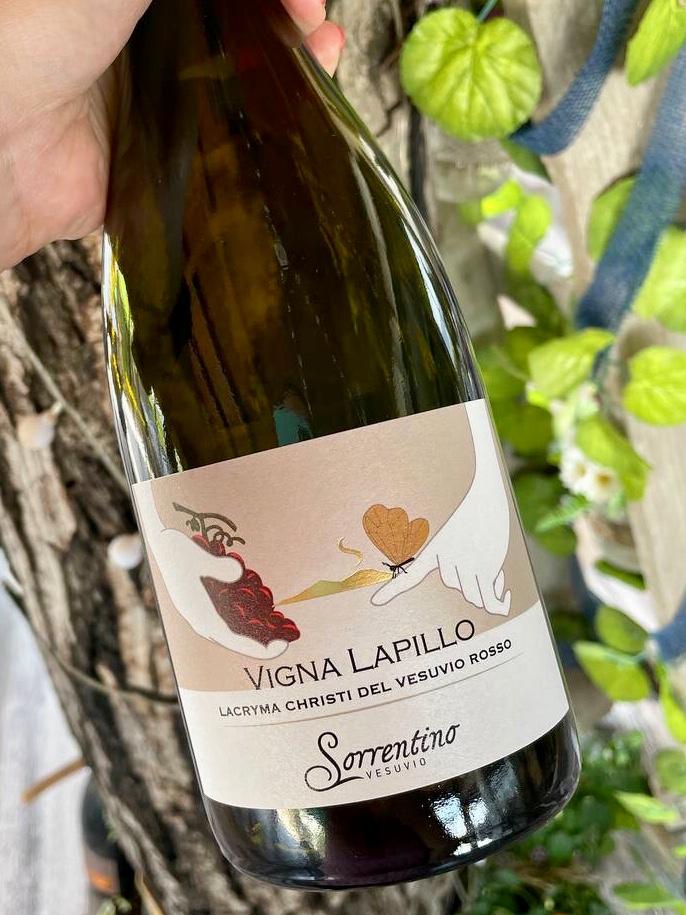 Sorrentino Vigna Lapillo rosso vini della campania rossi