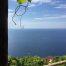 Cantina Capellini Cinque Terre